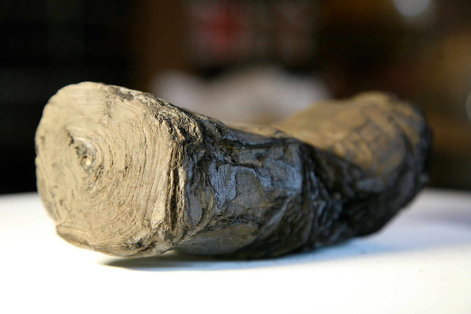 Carbonized Herculaneum Scroll